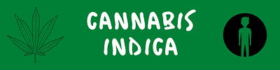 Cannabis%20indica%20guide
