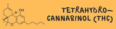 cannabis%20thc%20guide