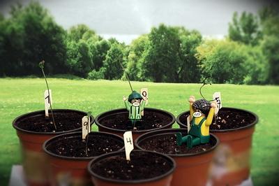2007 Seeds _04_03_VT005