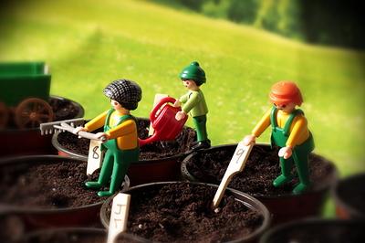 2007 Seeds _02_04_VT001